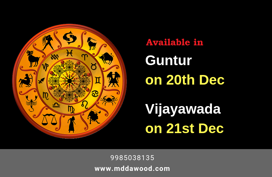 astrologer in guntur