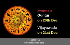 astrologer in guntur
